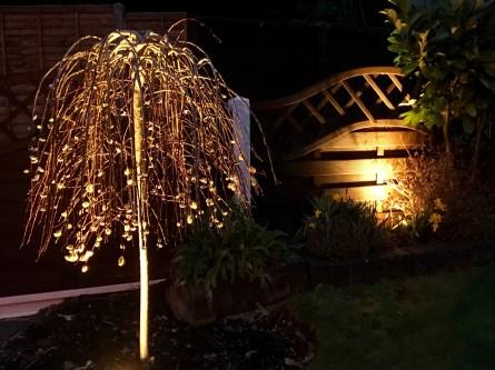 IMG 1615 - illuminating Gardens, Garden Lighting Installation Gallery
