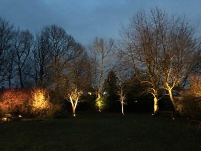 wide - illuminating Gardens, Garden Lighting Installation Gallery