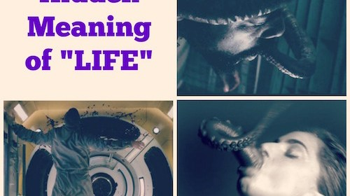 """The Hidden Meaning of """"Life"""""""