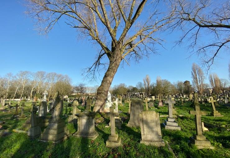 Markham grave.