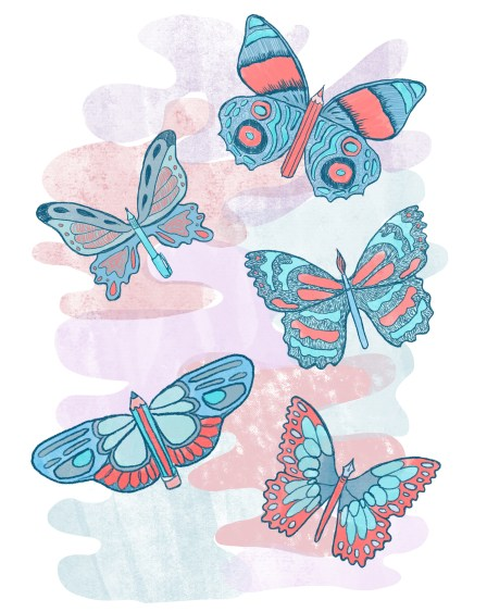 stratford illustration butterflies