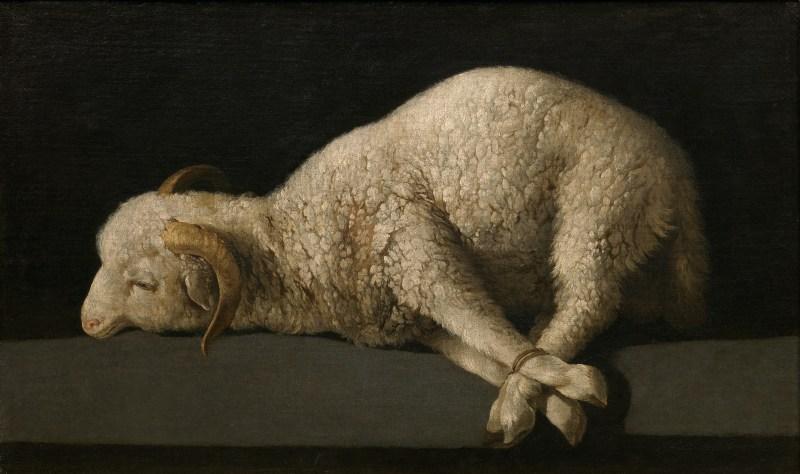 Agnus Dei, by Francisco de Zurabarán, c. 1635-40. Museo de Prado, Madrid, Spain. Via IllustratedPrayer.com