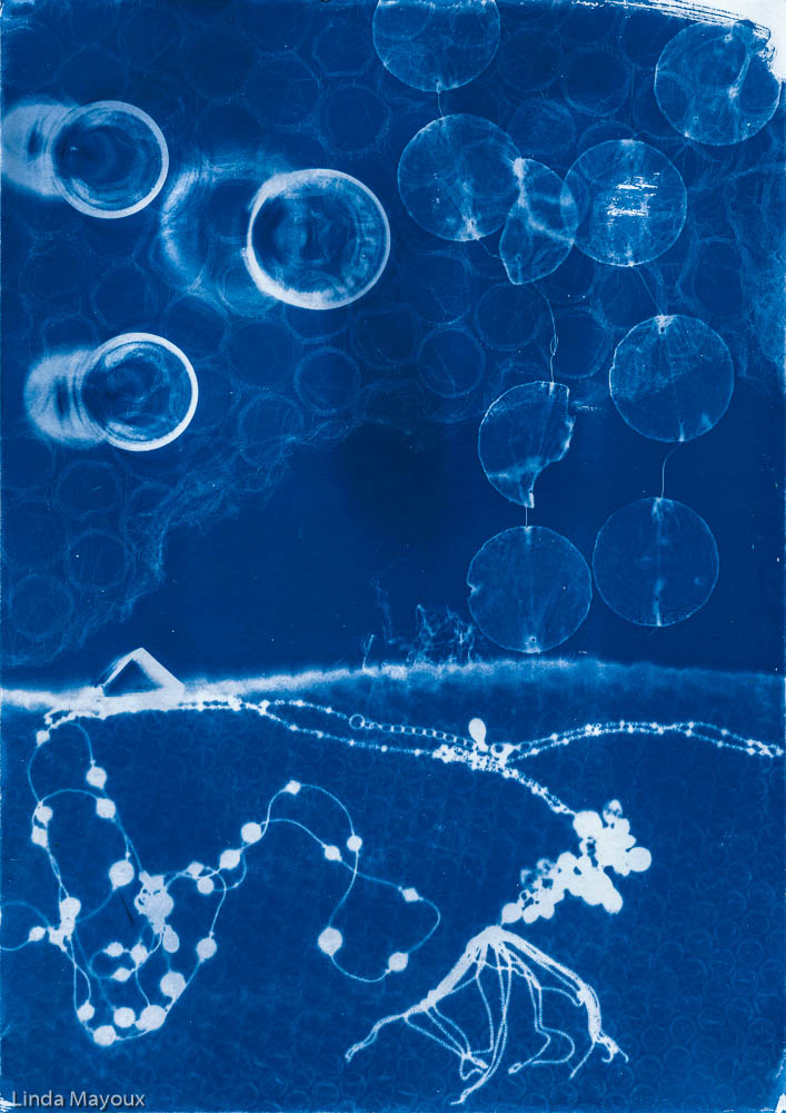 Blue cyanotype original 5.