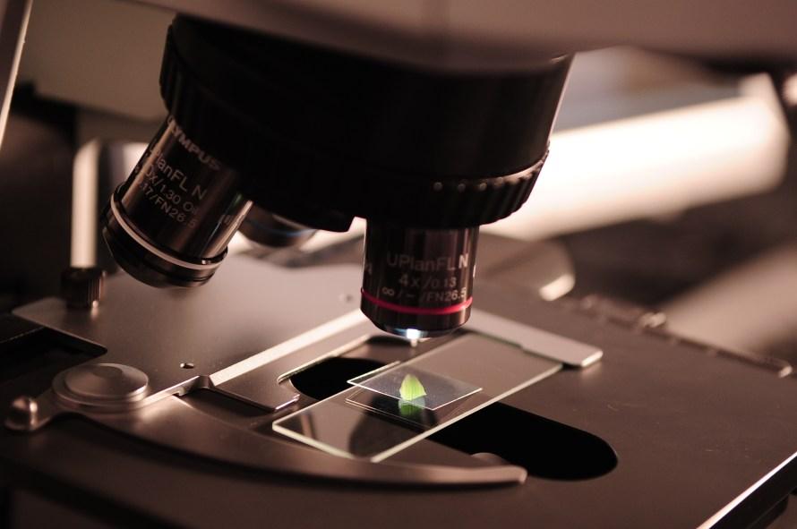 microscope, research, lab
