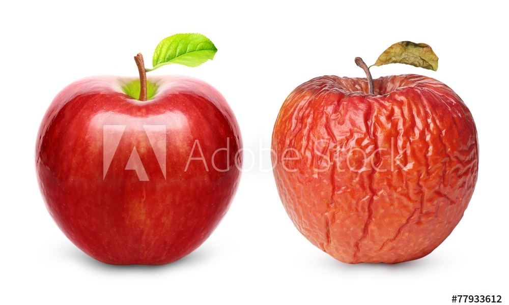 Wrinkled and fresh apple isolated