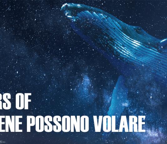 Le Balene Possono Volare