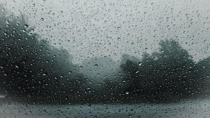Tempesta Eugene