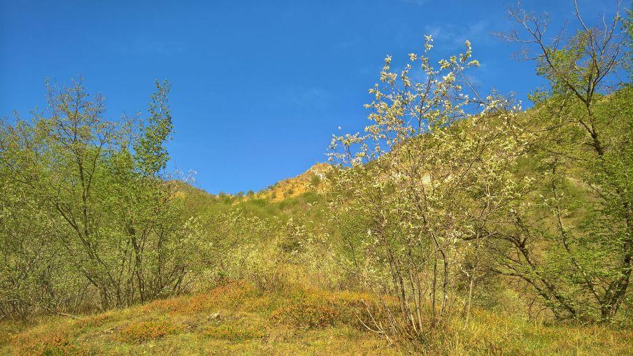 Valle Duppo