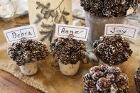 pine-cone-pots