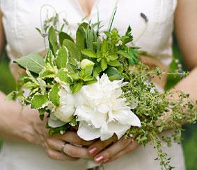 bouquet-di-erbe-aromatiche