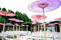 purple-parasol