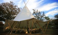 Feature-Wedding-Tent
