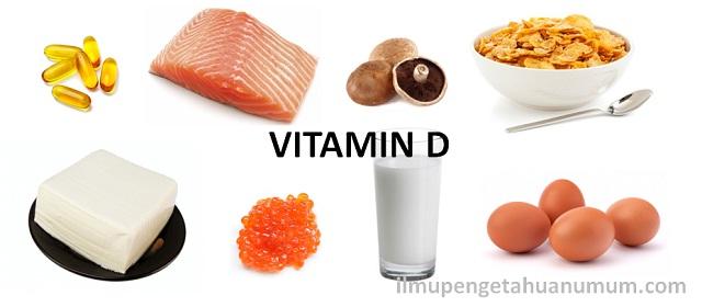 Makanan Yang Mengandung Sumber Vitamin D Tertinggi