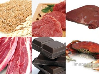 10 Makanan yang Mengandung Zinc Tertinggi