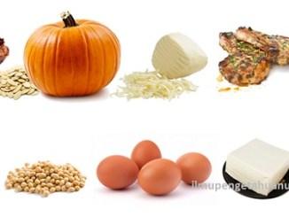 10 Makanan yang Mengandung Protein Tertinggi