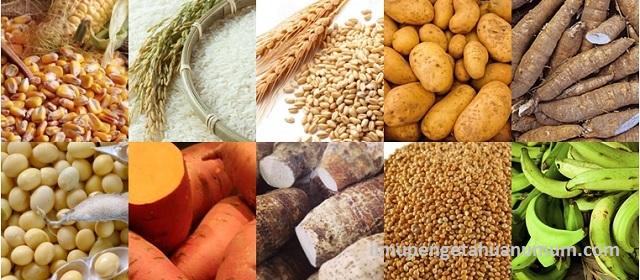 10 Makanan Pokok Manusia di Dunia