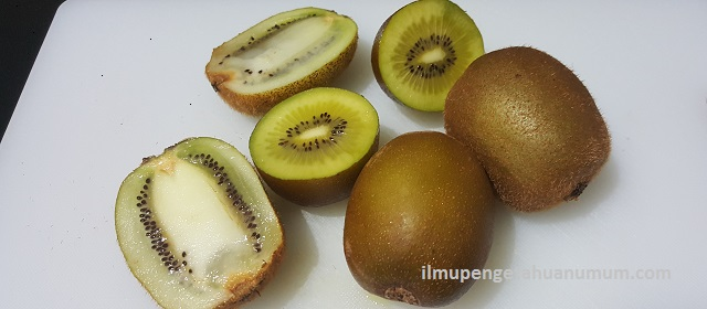 Kandungan Gizi Buah Kiwi dan Manfaat Buah Kiwi bagi Kesehatan