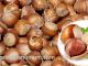 Kandungan Gizi Kacang Hazelnut dan Manfaat Kacang Hazelnut bagi Kesehatan