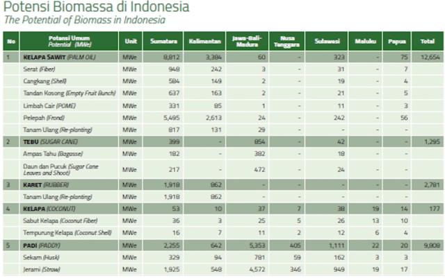 Potensi Pembangkit Listrik Tenaga Biomassa di Indonesia