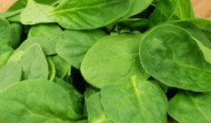 Spinach for great looking skin
