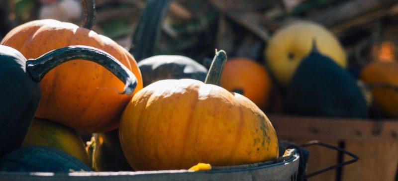 Welke groenten brengt oktober? Hier een overzicht van seizoensgroenten en seizoensfruit van oktober. Groenten van het seizoen zijn goedkoper, smaakvoller en vol met vitaminen en mineralen.