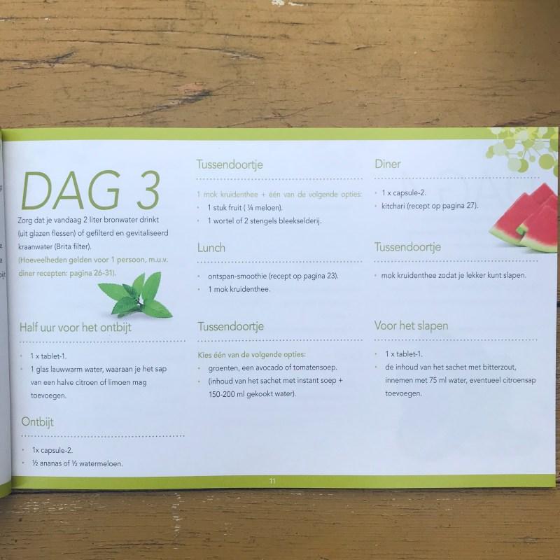 Wil je afvallen en gezond eten? Lees dan de review over de detox kuur van Laviesage. 11 dagen ontgiften met voeding.
