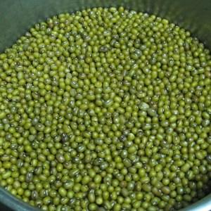 Mungbonen zijn onmisbaar in de Ayurvedische keuken. Super voedzaam en licht verteerbaar. Vol eiwitten en vezels.
