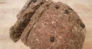 pane di segale ai mirtilli
