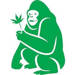 Green Gorilla ape logo