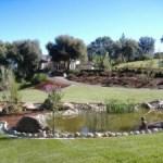 bellavistabackyard