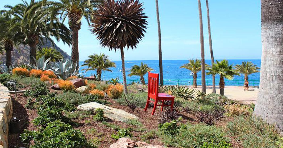 Red Chair Garden