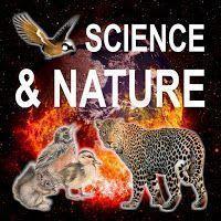 Ciência e Natureza Add-On para Kodi