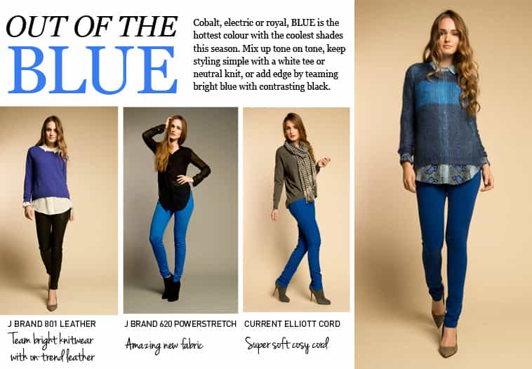 SHOP OUT OF THE BLUE AT TRILOGY