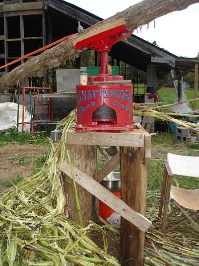 Horse drawn sorghum press operated on a farm