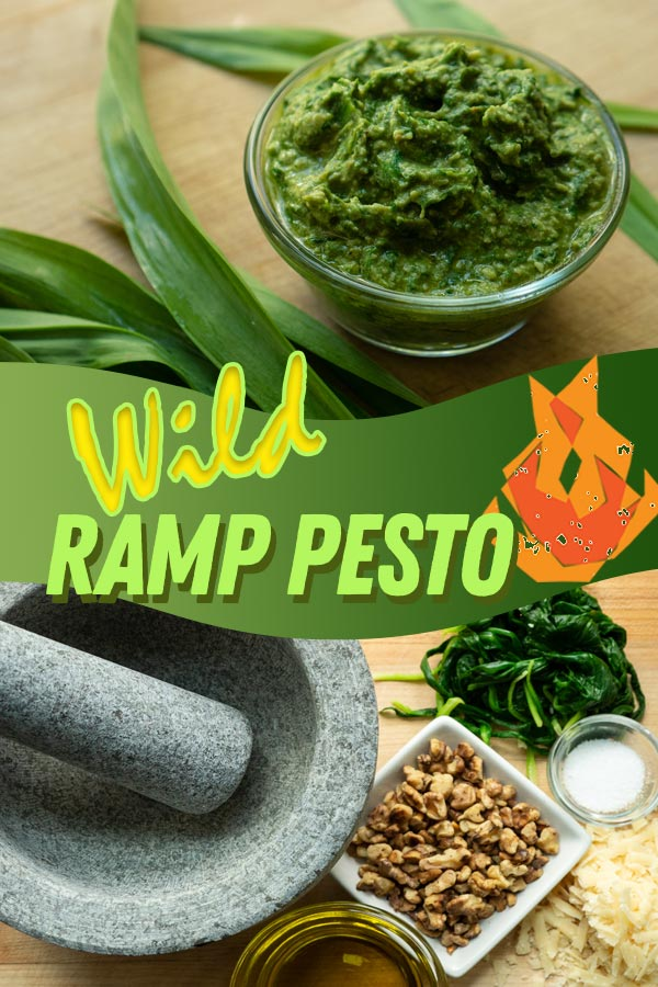 Wild Ramp Pesto ingredients and tools.