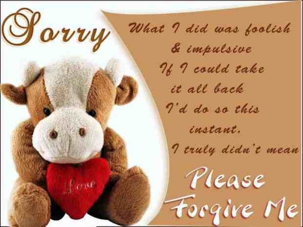 Teddy bear sorry quotes images wallpapers dowwnload