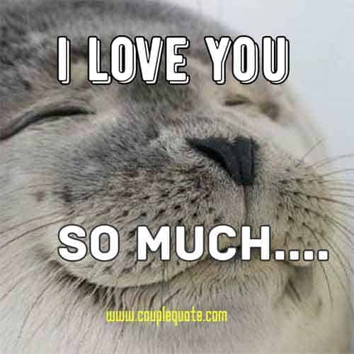 I Love You Memes for her and him?resize=500%2C500&ssl=1 75 funny i love you memes for him and her ilove messages