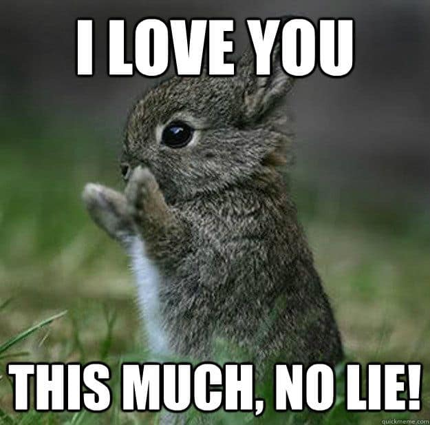 I Love You This Much No Lie Funny Love Meme Picture?ssl=1 i love you this much no lie funny love meme picture ilove messages