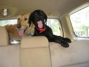 car ride home