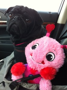 Edie's pink toy