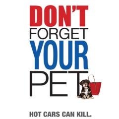 No Hot Pets!