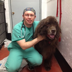 Questions for the Dog Side - My Interview with Dr Ryan Llera
