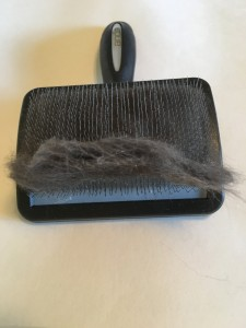 Andis Smooth brush slicker