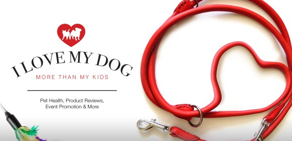 About Us – I Love My Dog More Than My Kids