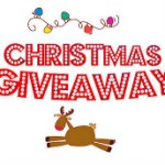 Positively Whimsy Hair Accessories Giveaway
