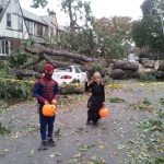 My Halloween Frankenstorm 2012, Hurricane Sandy aftermath