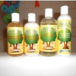 Nature's Baby Organics-an all natural shampoo that  is safe for your baby! {Review and Giveaway}