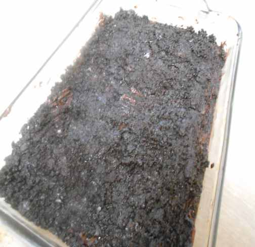 put all of the Oreo crunchy stuff on top of the brownies