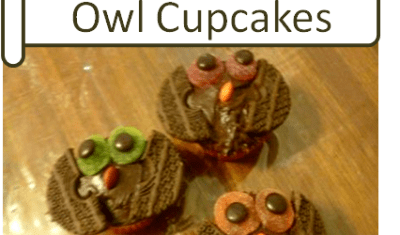 Cute and Easy Homemade Owl Cupcakes