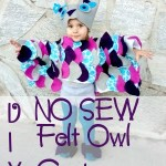 Make your own toddler owl costume out of felt and hot glue! Absolutely no sewing involved!